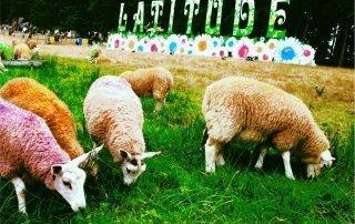 Latitude Festival, Suffolk, UK