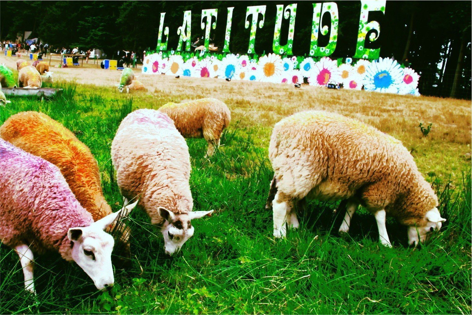 Latitude Festival, Suffolk, UK