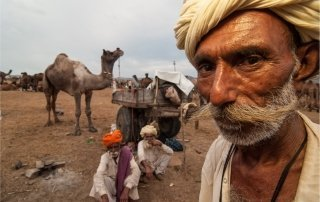 Pushkar Camel Fair, India. Ярмарка верблюдов в Пушкаре, Индия.