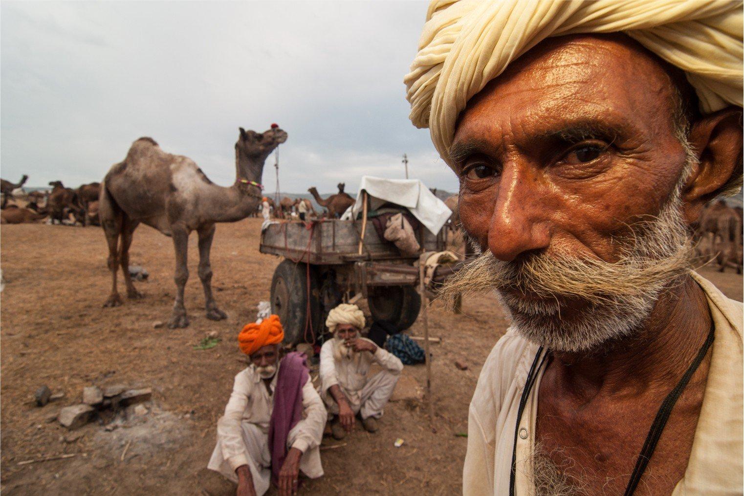 Pushkar Camel Fair, India. Ярмарка верблюдов в Пушкаре, Индия.