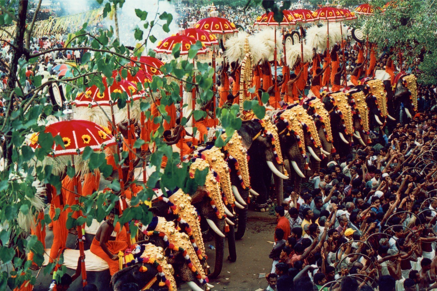 Thrissur Pooram - Elephant Festival, Kerala, India. Триссур Пурам - Фестиваль Слонов