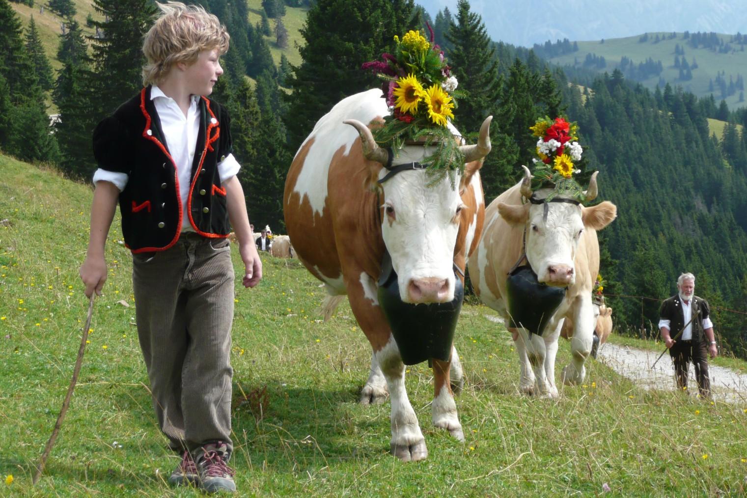 Switzerland travel. Швейцария - туристический справочник