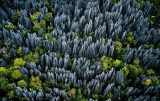 Tsingy de Bemaraha. Travel. Цинги де Бемараха