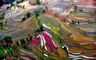 Yuanyang Rice Terraces. Travel. Рисовые террасы Юньнан