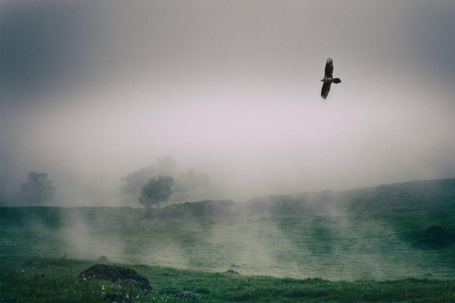 Ингушетия. Авторский тур Сергея Шандина