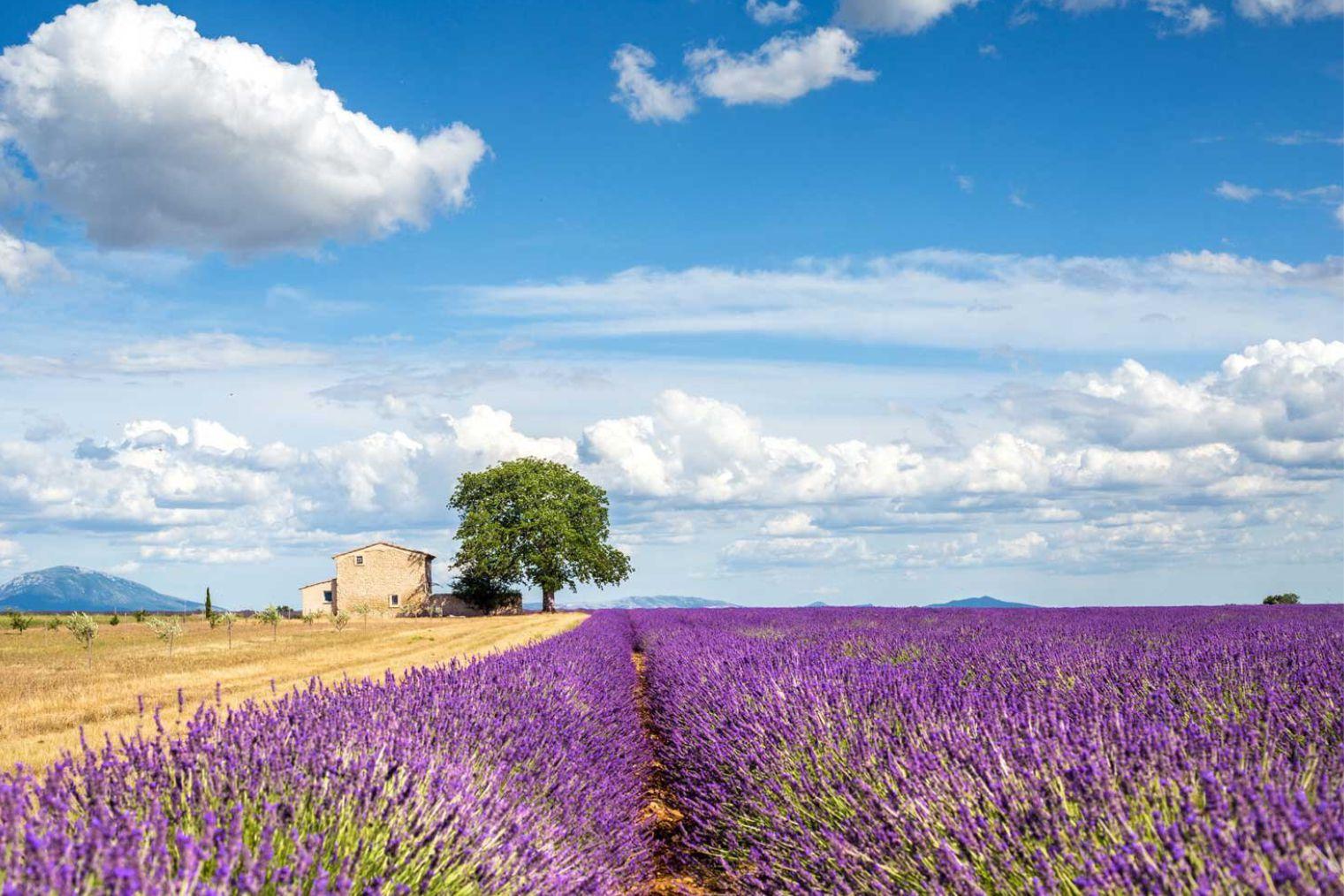 France - Tourist information
